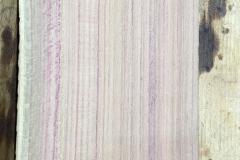 Pflaumenholz für das Griffbrett