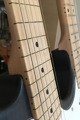 Double-Neck, Detail, fretless Hals