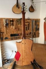 Hollow-Body-E-Gitarre, Gitarre fertig, Rückseite